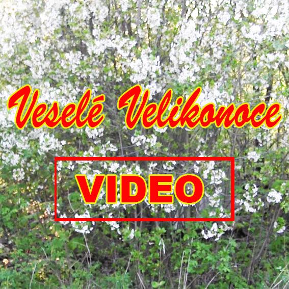 Veselé Velikonoce  -- VIDEO